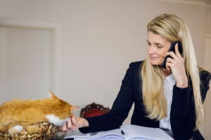 Business woman and cat in kitchen