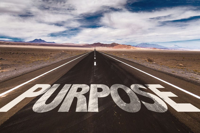 Find purpose in your career